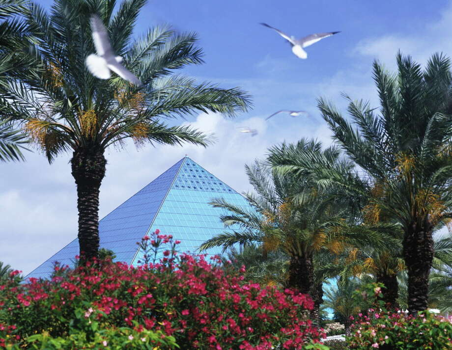 Moody Gardens Has A Variety Of Activites For A Fun Filled Spring Break. /