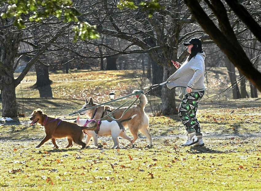 Take a walk in your local park: the Crossings in Colonie, Central Park in Schenectady and Washington Park in Albany. Bonus points if you bring your four legged friends.