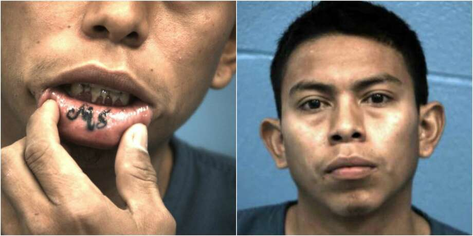 Documented MS-13 gang members Jorge Alexander Cortez (pictured here) and Bryan Funez were arrested on charges of attempting to commit murder. Photo: Williamson County Sheriff's Office