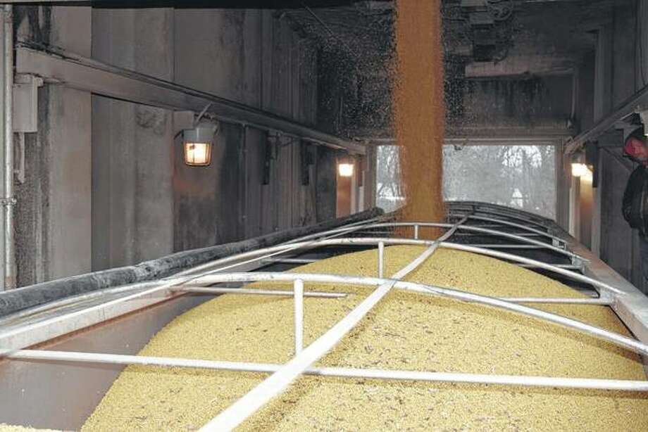 Soybeans are loaded onto a semitrailer Wednesday at the Franklin Elevator in Franklin. They were bound for a barge-loading facility on the Mississippi River near St. Louis.