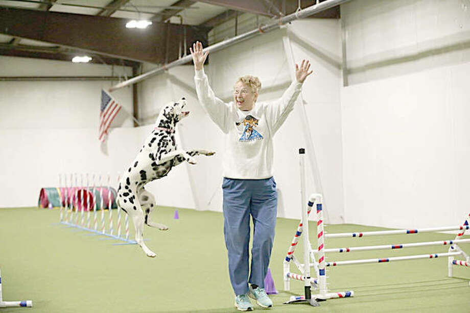 Elaine Lindhorst trains Abby, a Dalmatian, at Westinn Kennels in Wentzville, Missouri. Joan Meyer is on the cusp of opening a training space in Wood River, Triune Canine Training and Event Center, next month. Photo: For The Telegraph