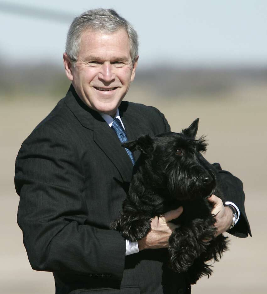 George W. Bush, the 43rd president of the United States was born in Connecticut but was a Texas congressional candidate and businessman before he was elected president in 2001.