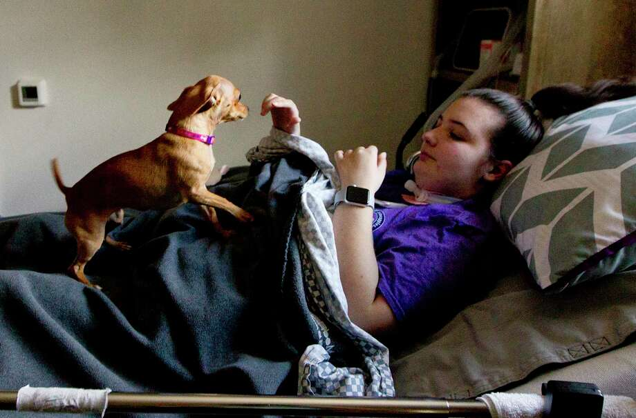 "Jamie Richards-Hogland, 19, plays with her dog 'Avery' from her bedroom, Wednesday, Feb. 28, 2018, in Conroe. The Tarleton State University student was shot in the face in December 2017 in what Stephenville police Sgt. Sha King called a case of ""mistaken identity over drug-related issues,é"" according to the Fort Worth Star-Telegram. Shawn Patrick Layton, 26, was later arrested for the shooting. Paralyzed from the chest down, Hogland is working to regain feeling and movement in her hands. Photo: Jason Fochtman, Staff Photographer / © 2018 Houston Chronicle"