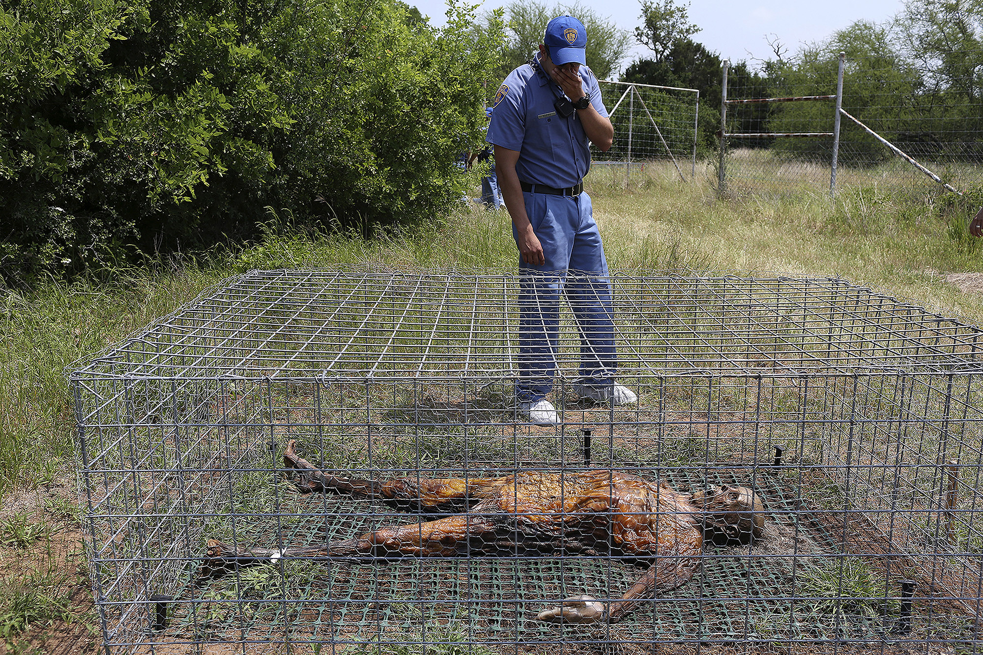 Body Farms In The United States