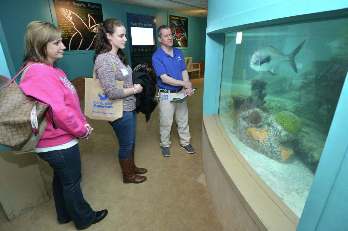 """Educators Chrisine McNamara from Shelton High School and Laura Donovan from Foran High in Milford look for a sea turtle on a guided tour with the aquarium's Jim Dauterman during """" Fish School' on Wednesday February 28, 2018 in Norwalk Conn. at The Maritime Aquarium during a free after-hours open house. The purpose of the free evening is to show teachers and other educators the many ways they can connect their students with The Maritime Aquarium?'s unique educational programs."""