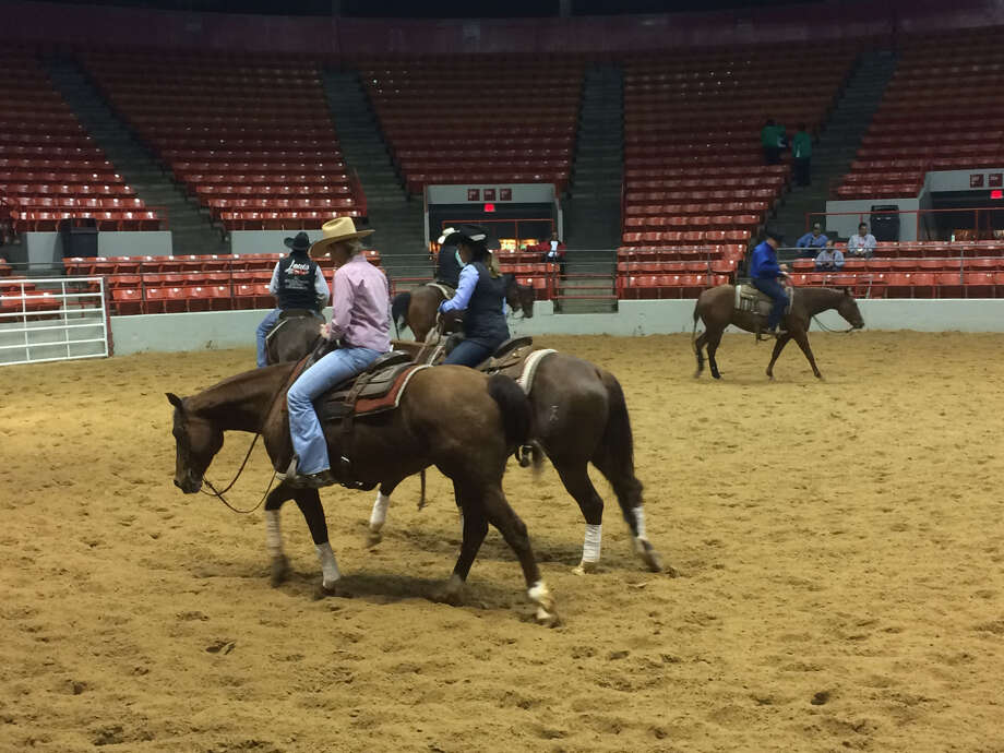 Cutting horses at the Houston rodeo on Friday show off their moves and their ponytails. Photo: Andrew Kragie