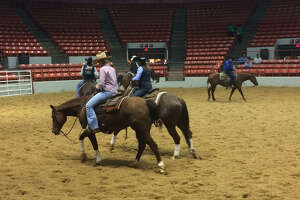 Cutting horses at the Houston rodeo on Friday show off their moves and their ponytails.