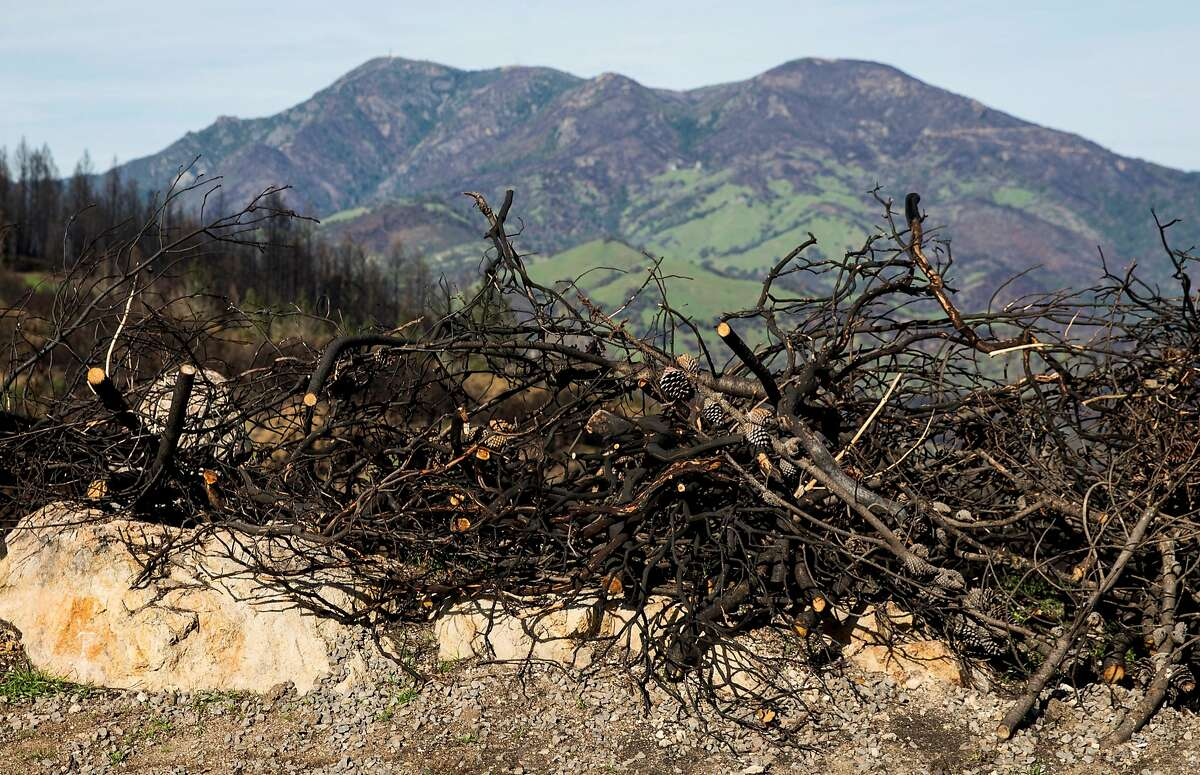 A pile of burnt sticks sits in the yard of Per Rosdahl's home Wednesday, Jan. 31, 2018 in Knights Valley, Calif. after it was destroyed by the Tubbs Fire in October 2017.