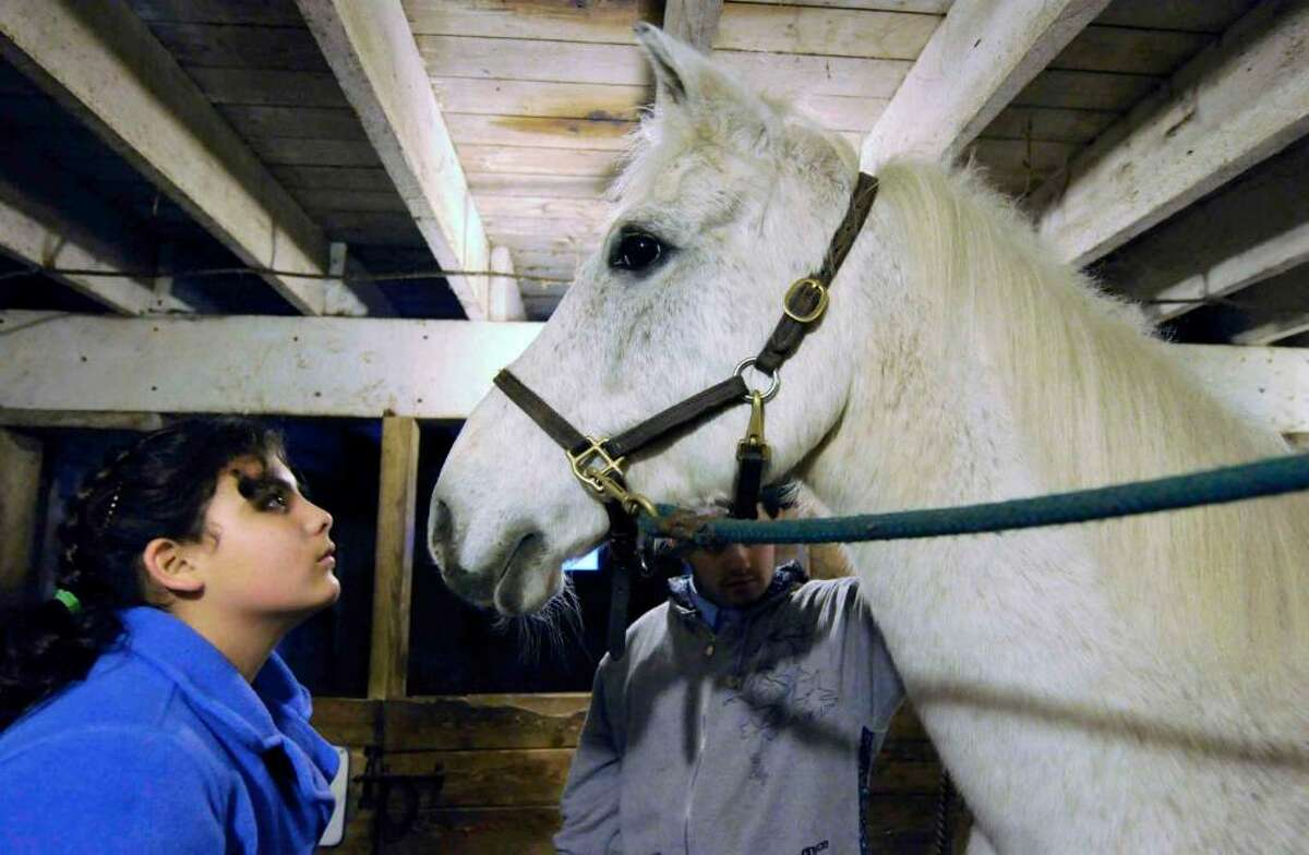 Twelve-year-old Brittany, left, and Mark, 15, visit with horse Talisman while they and other foster children in need of permanent families visit rescued horses at Little Brook Farm in Old Chatham on Nov. 14, 2009. (Michael P. Farrell / Albany Times Union)