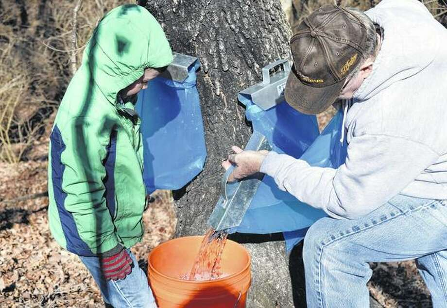Mason Burrus helps Todd Burrus collect sap Saturday during a maple syrup demonstration in Murrayville. Photo: Samantha McDaniel-Ogletree | Journal-Courier