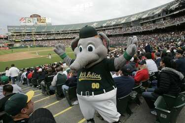 A definitive ranking of every MLB mascot - Houston Chronicle