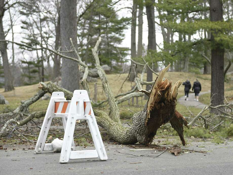 A fallen tree blocks the roadway going through Bruce Park in Greenwich, Conn. Monday, March 5, 2018. Heavy winds from the weekend's storm knocked down many trees and took out power in parts of Greenwich. Photo: Tyler Sizemore / Hearst Connecticut Media / Greenwich Time
