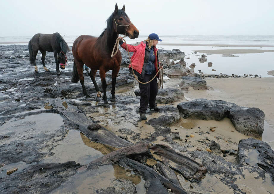 A woman walks her horse among ancient petrified tree roots and branches revealed on Redcar beach on March 6, 2018 in Redcar, England. Following recent bad weather including Storm Emma, the sand on the beach has been washed away revealing the ancient forest. The first written account of the submerged forest dates from 1871, the petrified tree stumps give an insight as to how this stretch of coastline looked at least 7,000 years ago. Photo: Ian Forsyth/Getty Images