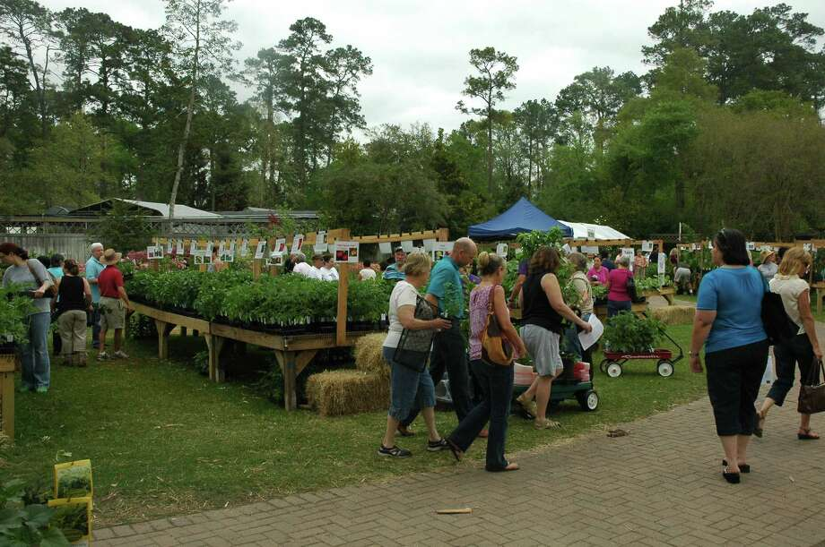 The crowd at March Mart browses through the edible section. Photo: Mercer Botanic Gardens