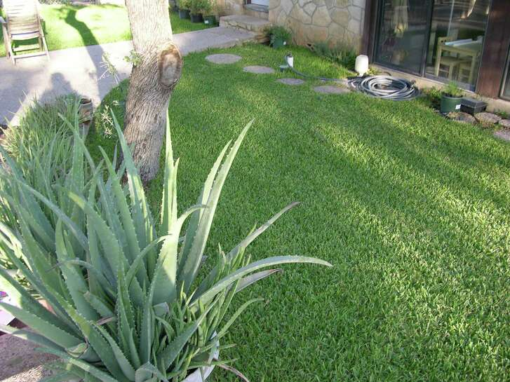 Now is the time to aerate and top dress your lawn.