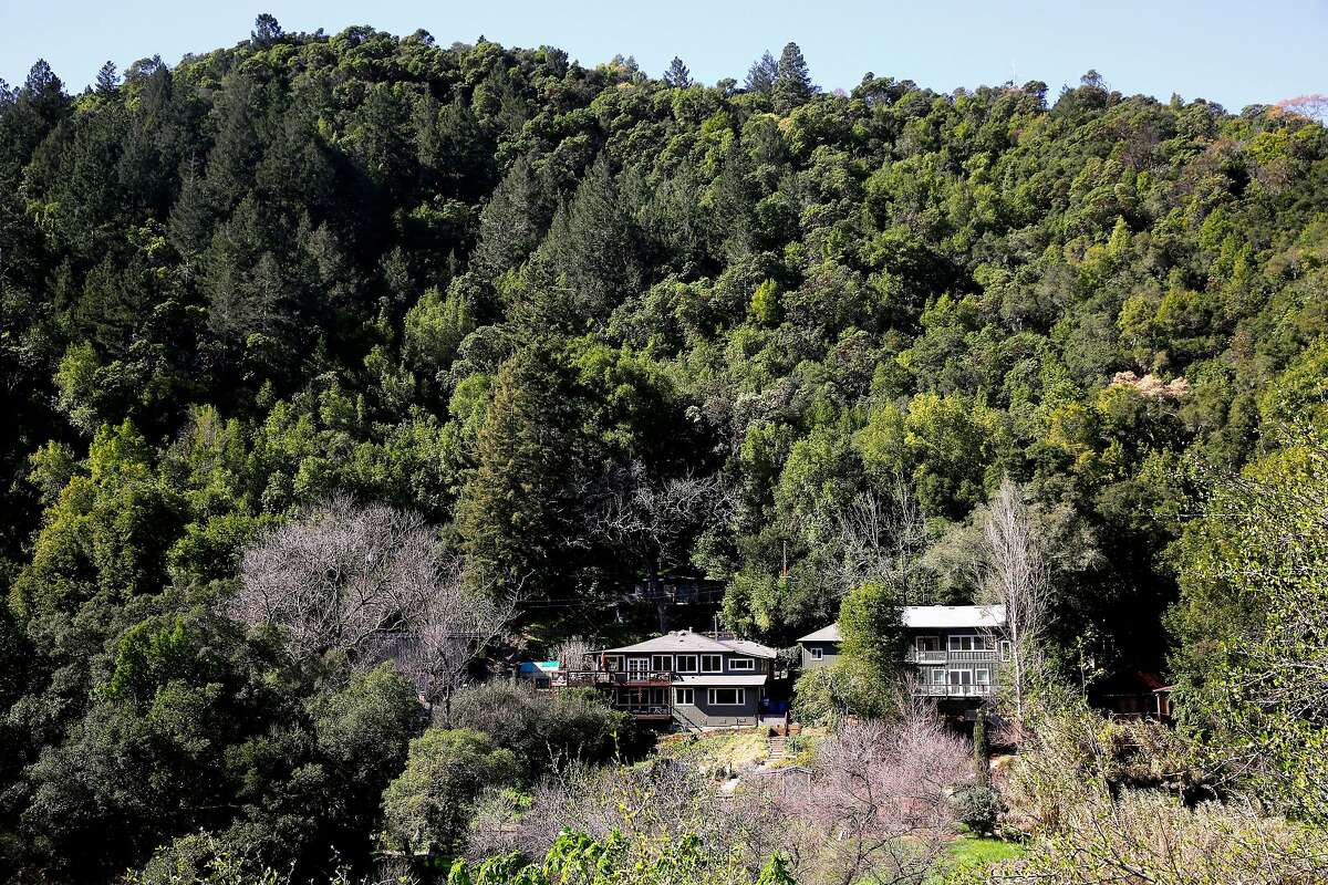 Homes in the Fitch Mountain neighborhood are surrounded by thick vegetation just outside Healdsburg, Calif., as seen on Mon. Feb. 26, 2018.