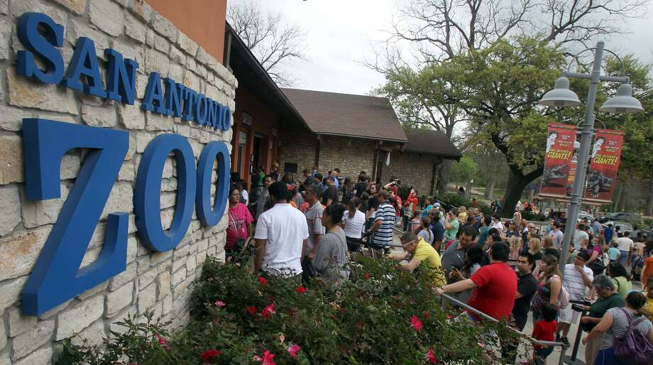 First responders can get into the San Antonio Zoo for free during the month of September. Photo: John Davenport /San Antonio Express-News / SAN ANTONIO EXPRESS-NEWS (Photo can be sold to the public)