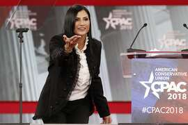 In this Feb. 22, 2018, photo, Dana Loesch, spokeswoman for the National Rifle Association, speaks at the Conservative Political Action Conference (CPAC), at National Harbor, Md. She is poised, photogenic and articulate _ the new public face of an organization that long has been associated with older white men. Yet Loesch is not softening the message of an organization that has morphed from a hunting and Second Amendment rights advocacy group into an active voice in the nation�s culture wars, with positions on everything from immigration to socialism. (AP Photo/Jacquelyn Martin)
