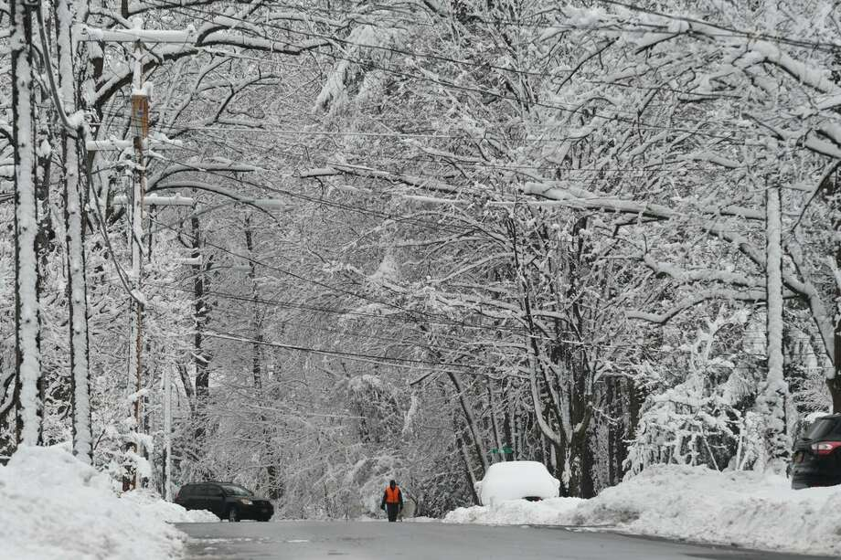 Trees and wires are down in Delmar on Thursday, March 8, 2018, in the aftermath of the snowstorm. (Will Waldron/Times Union) Photo: Will Waldron/Times Union