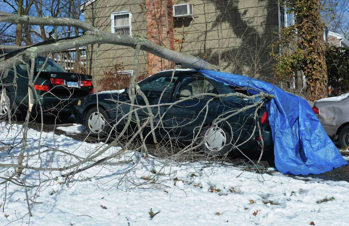 A car was crushed by a fallen tree on Kellee Drive Thursday, March 8, 2018, as the Nor'Easter left downed trees and power outages across Norwalk, Conn.