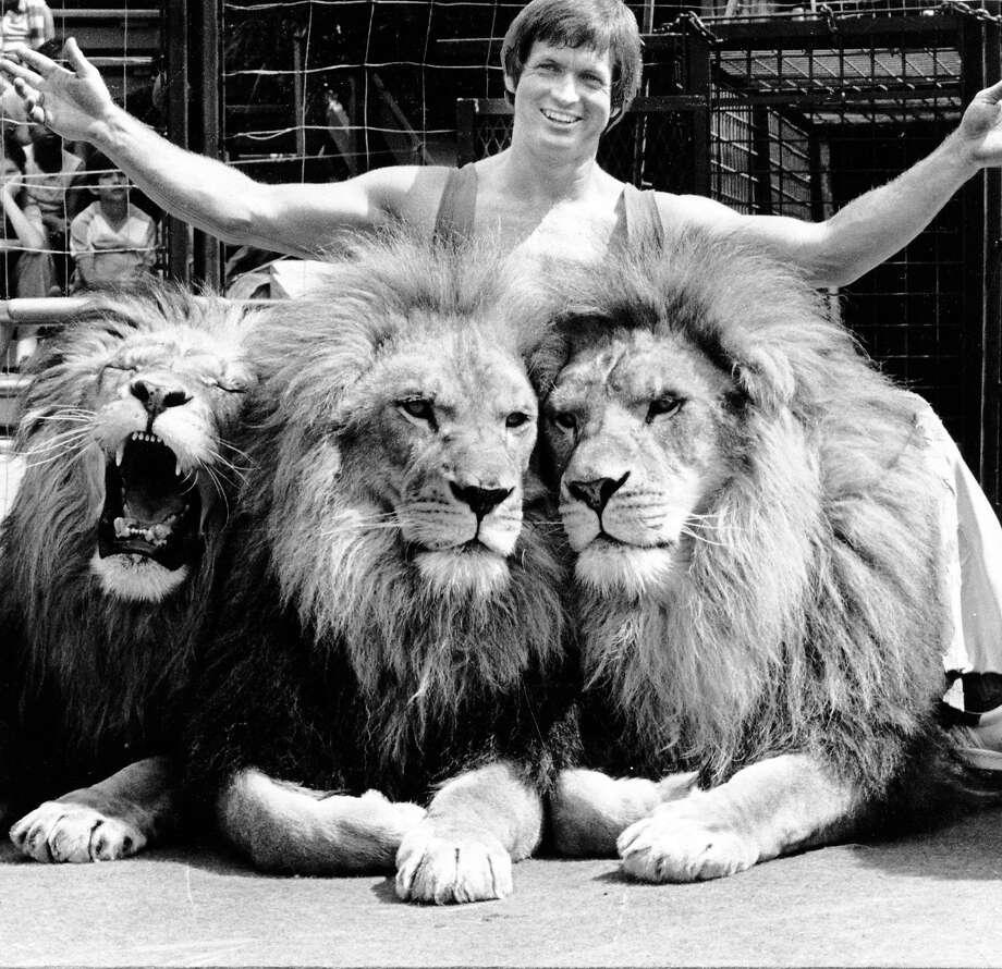A trainer with three lions at Marine World Africa U.S.A. circa March 7, 1982. Photo: Courtesy Marine World Africa U.S
