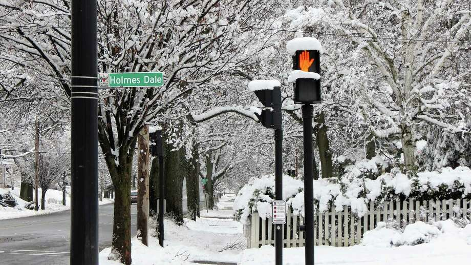 Karen Reilly of Albany sends in an appropriate image for the season ? note the traffic signal at Holmes Dale in Albany?s Buckingham Pond neighborhood ? considering the two early March storms visited upon the Capital Region.(Karen Reilly)
