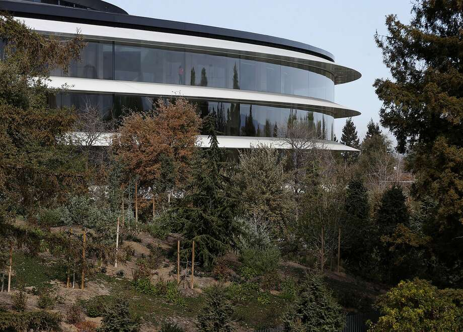 The futuristic Apple Park campus in Cupertino, designed to accommodate more than 13,000 Apple employees, was built under Dan Whisenhunt's supervision. Photo: Paul Chinn, The Chronicle