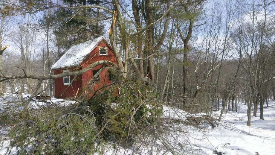 One home on Orchard Road in Haddam saw a large amount of trees toppled during the nor'easter. Power there was restored to homes at 11:30 p.m. Thursday. Photo: Erik Hesselberg Photo