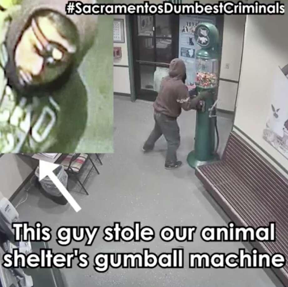 A man in Sacramento stole an animal shelter's gumball machine. Photo: Front Street Animal Shelter/City Of Sacramento