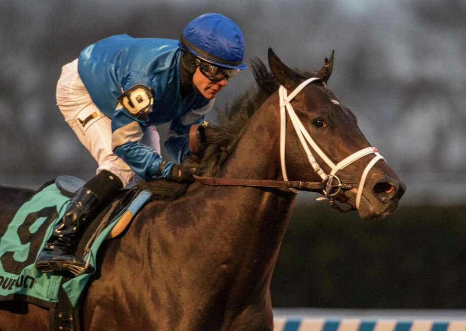 Enticed with jockey Junior Alvarado in the saddle cruises to the win in the 66th running of the Grade III Gotham Stakes at Aqueduct Saturday March 10, 2018 in Ozone Park, N.Y. (Skip Dickstein/Times Union) Photo: SKIP DICKSTEIN, Albany Times Union