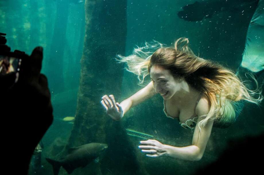A mermaid at an aquarium in Sao Paulo, Brazil. Photo: NurPhoto/NurPhoto Via Getty Images