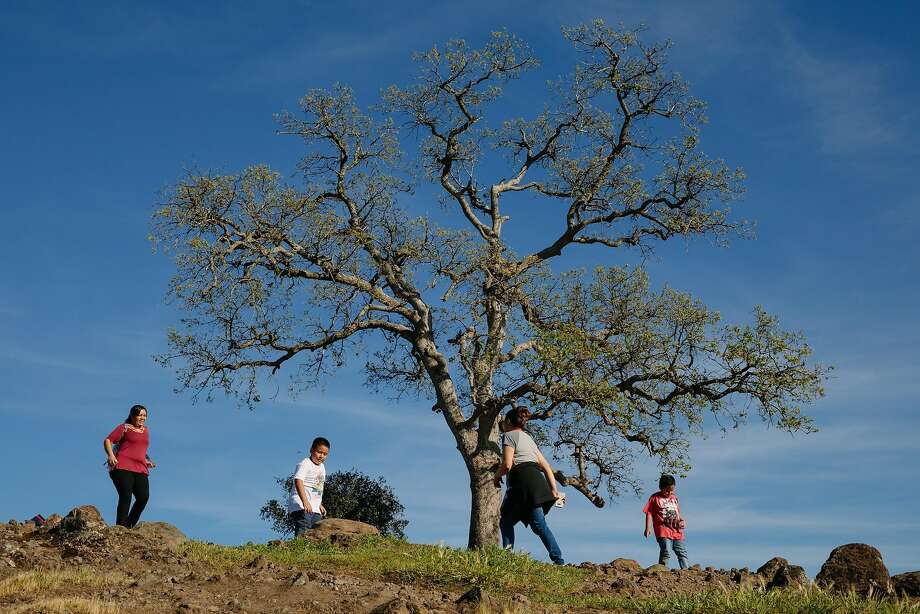 People enjoy an outing on top of Monkey Face at Bidwell Park in Chico. Photo: Mason Trinca, Special To The Chronicle