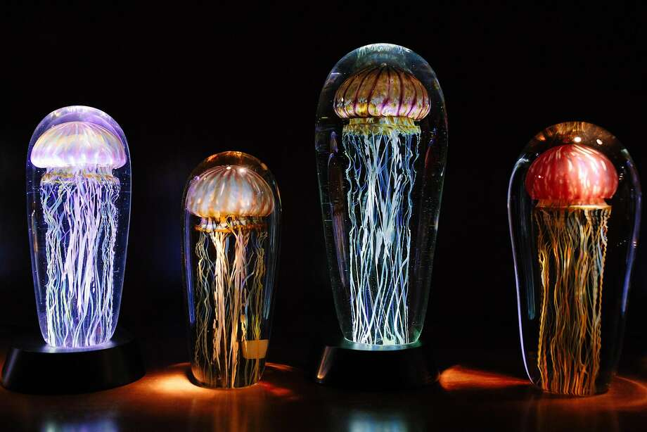 Glass jellyfish are artist Rich Satava's signature pieces. Photo: Mason Trinca, Special To The Chronicle