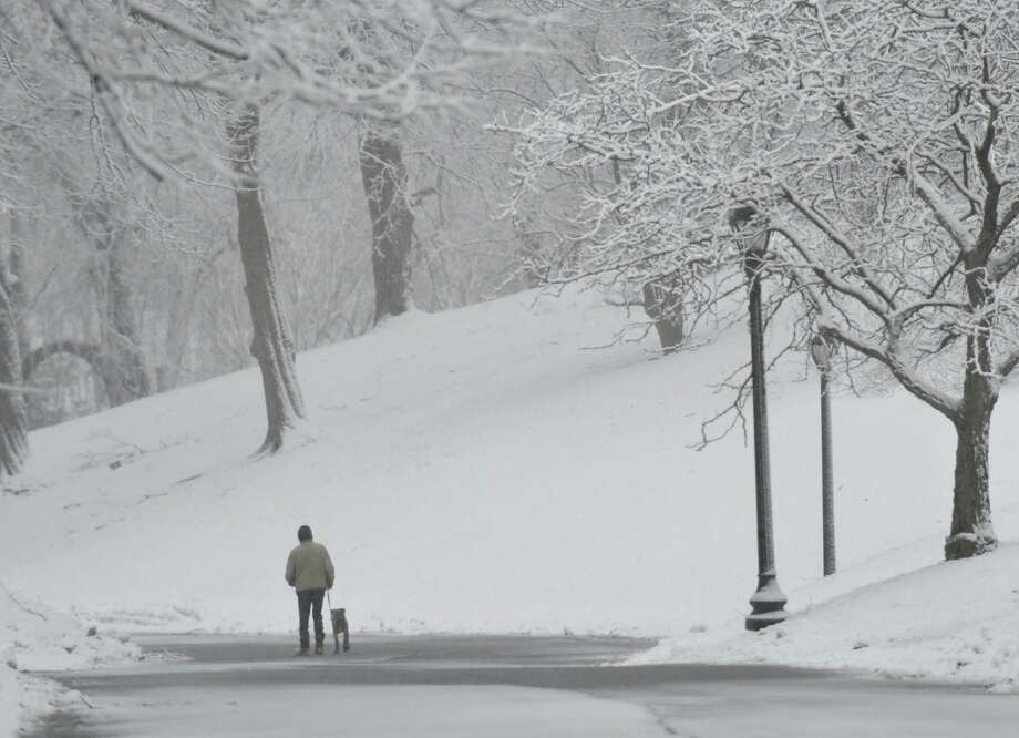 Despite the third nor'easter to hit the region in 10 days, a man heads out to walk a dog Tuesday morning in Albany's Washington Park. Photo: Skip Dickstein / Times Union