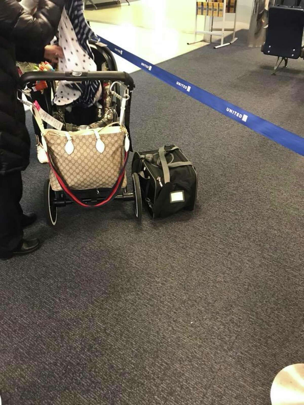 United Airlines is investigating a 10-month-old puppy that died Monday evening after a flight attendant told its owner to place it and its carrier in the overhead compartment for the duration of the flight.