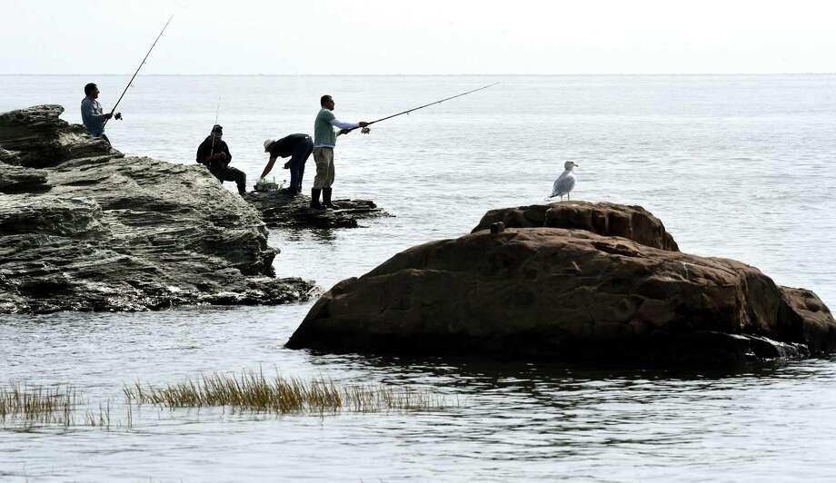 Fishermen cast into the waters of Long Island Sound in September 2015 in Milford, Conn. Photo: (Arnold Gold-New Haven Register)