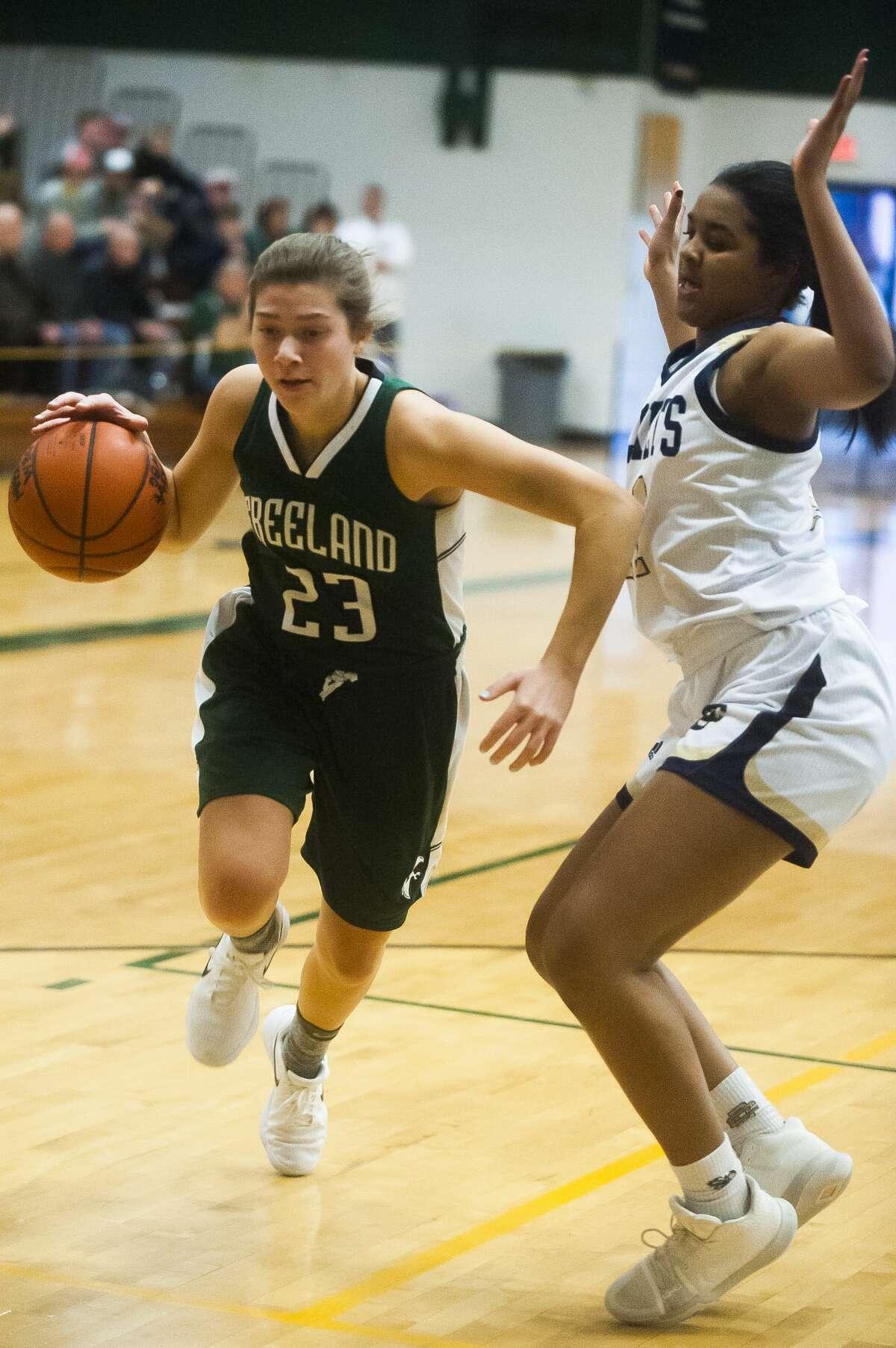Freeland junior Alyssa Argyle dribbles down the court while Detroit Country Day junior Adrian Folks guards her during their Class B state quarterfinals game on Tuesday, March 13, 2018 at West Bloomfield High School. (Katy Kildee/kkildee@mdn.net)