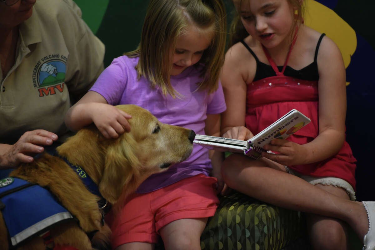 Children read to a therapy dog named Pippin March 13, 2016, at Midland County Public Library Centennial Branch. James Durbin/Reporter-Telegram