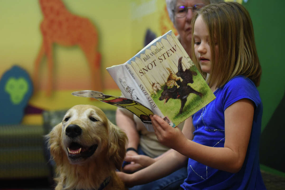Ava Dallas, a student at Midland Christian, reads to a therapy dog named Pippin, handled by Josie Gans (in background) March 13, 2016, at Midland County Public Library Centennial Branch. James Durbin/Reporter-Telegram