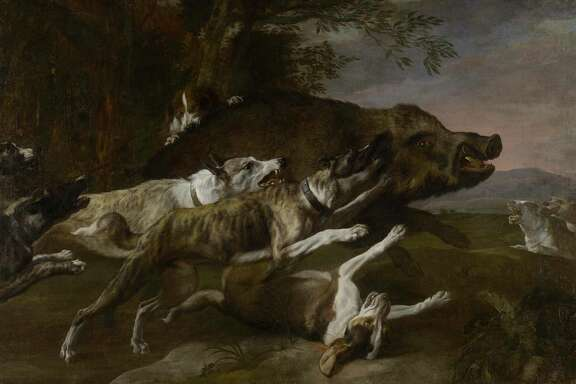 "Pieter Boel's ""Hounds bringing down a Boar,"" mid-17th century, oil on canvas, the Museum of Fine Arts, Houston, Museum purchase funded by Frank Hevrdejs and Gary Petersen in honor of Alfred C. Glassell, Jr. at ""One Great Night in November, 2013."""