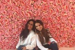 Flower Vault, at 20626 Stone Oak Parkway, is a pop up that's pretty much an Instagram heaven. For $15 a person (kids are free) visitors can take advantage of five floral-themed rooms to shoot photos for an hour. Flower Vault welcomes professional and amateur photographers as well as friends who just want to up their Instagram aesthetic.