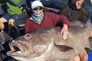 Sue Elcock, 68, of England, spent nearly 40 minutes reeling in a massive 130-pound fish March 8 off the coast of Australia.