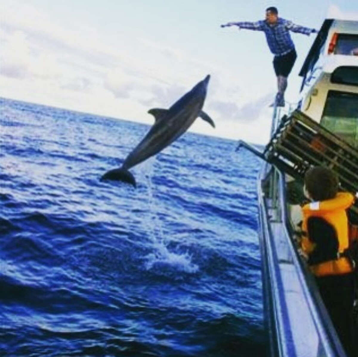 Deep sea fishing off the coast of Western Australia with Reel Force Charters is not for the faint of heart.