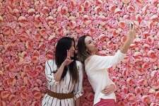Friends Ari Cowan (left) and Kristi Ellis snap a selfie in front of a wall of pink flowers at Flower Vault. The pop-up opened on March 12 and has been getting lots of play on social media