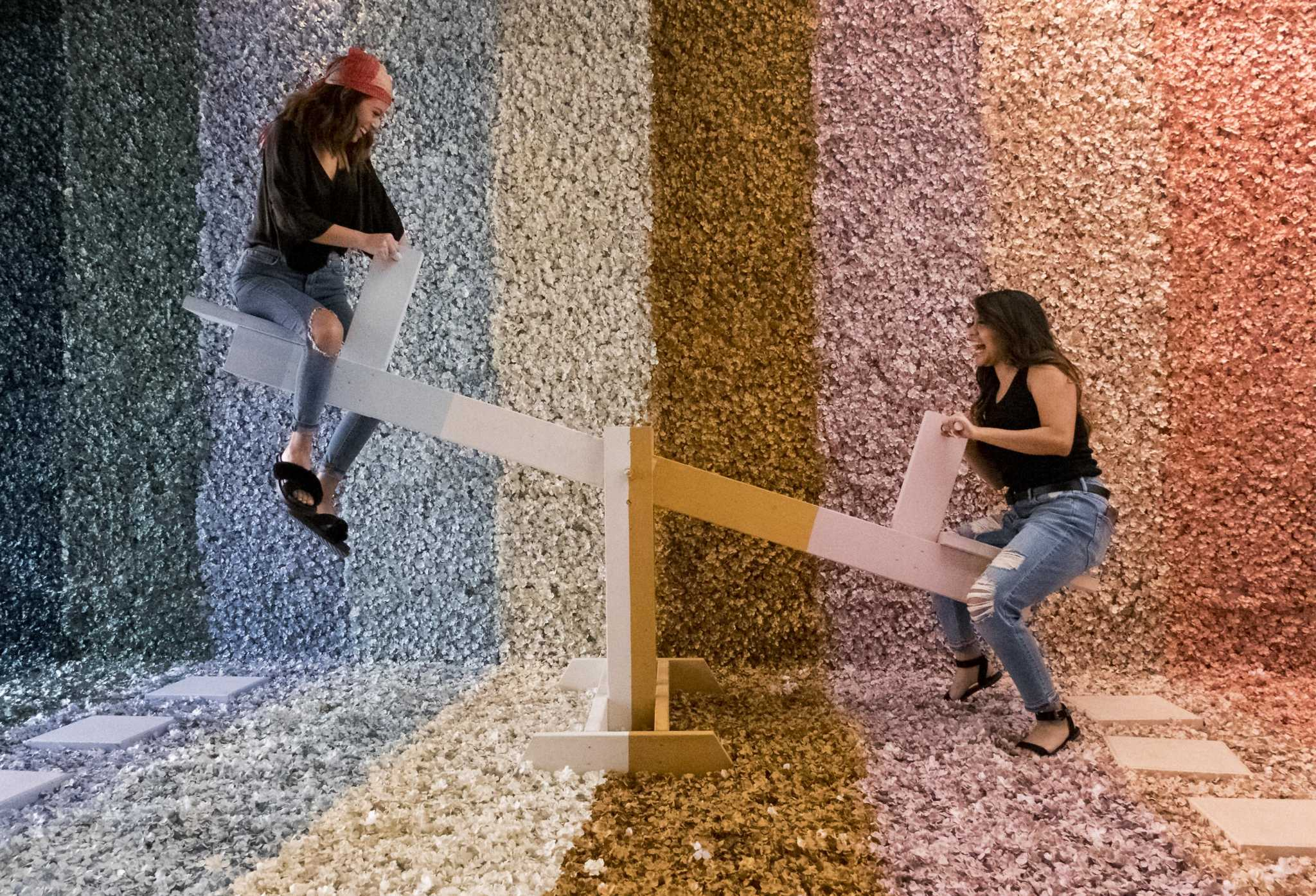 S A S Instagramable Flower Vault Will Remain Open