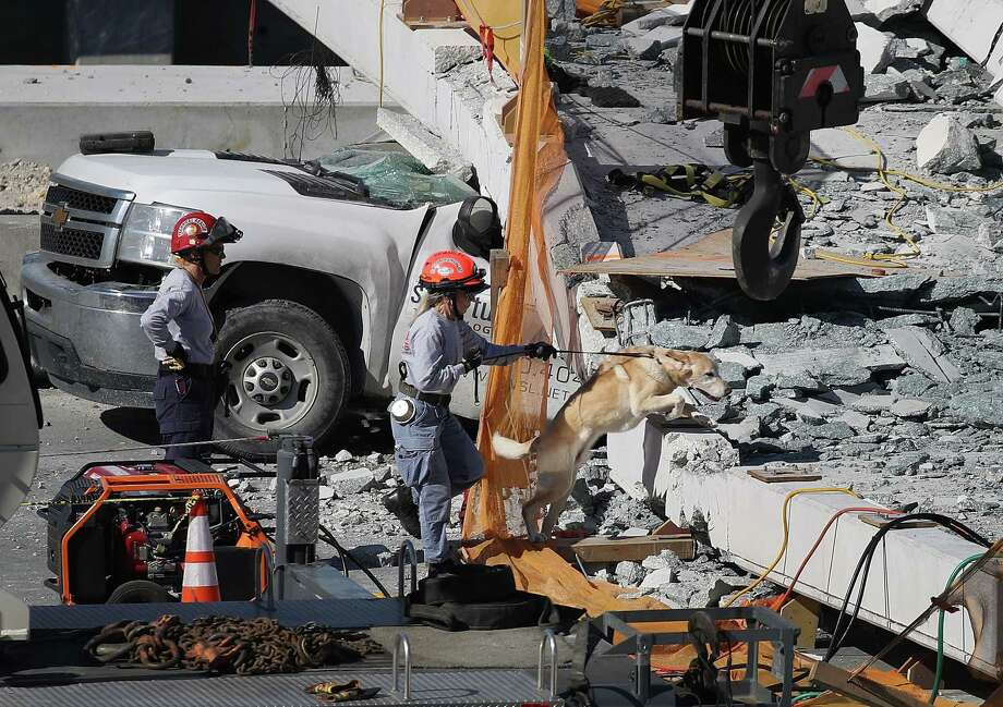 MIAMI, FL - MARCH 15:  A rescue dog and its handler works at the scene where a pedestrian bridge collapsed a few days after it was built over southwest 8th street allowing people to bypass the busy street to reach Florida International University on March 15, 2018 in Miami, Florida. Reports indicate that there are an unknown number of fatalities as a result of the collapse, which crushed at least five cars.  (Photo by Joe Raedle/Getty Images) Photo: Joe Raedle / 2018 Getty Images