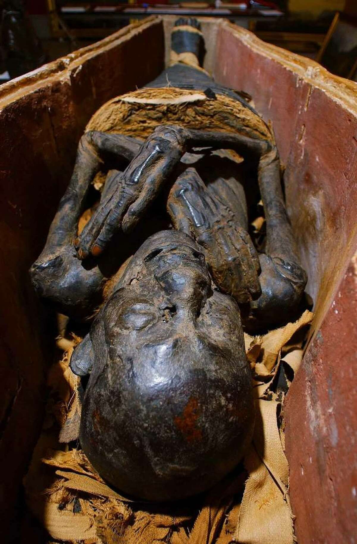Male Egyptian mummy circa 900 B.C. is on display at the Albany Institute of History & Art. Albany , New York. (Michael Farrell/Times Union Archive)