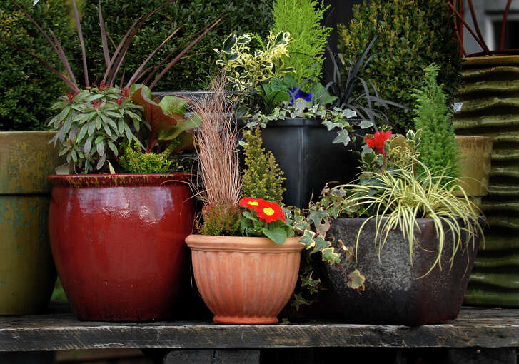 A red glazed container, a small terra-cotta pot, a tall black metal container and a rustic vessel provide contrast on the patio.