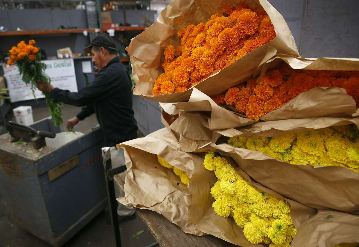 Joel Reza trims stems from marigolds sold by Skyline Flower Growers at the SF Flower Mart in San Francisco, Calif. on Thursday Oct. 26, 2017. Orange and Yellow blossoms are traditionally used in Dia de los Muertos celebrations.
