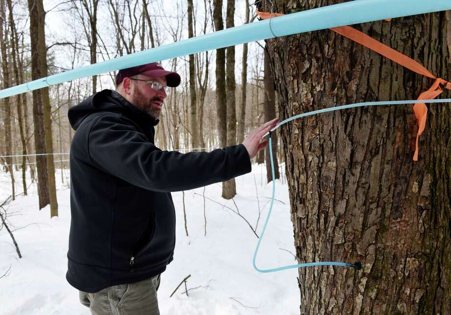 Riverside Maple Farms co-owner Chris Welch inspects the sap lines linking maple trees across the farm's 260 acre property on Friday, March 16, 2018, in Glenville N.Y. A network of tubes pulls sap through a vacuum down to the production facility. The farm opened to the public in October. (Will Waldron/Times Union) Photo: Will Waldron / 20043230A